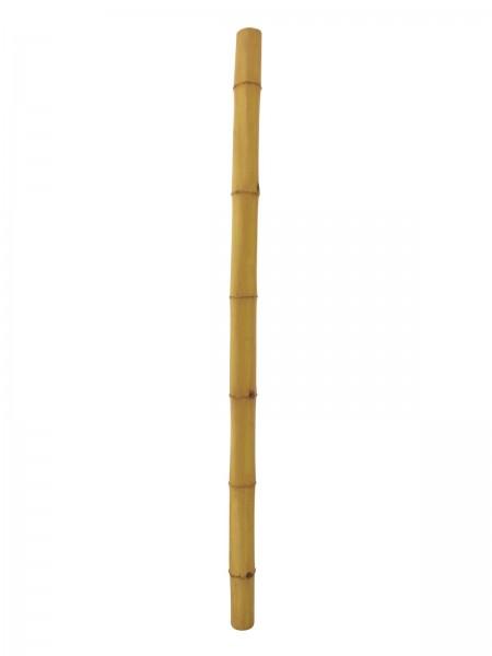 EUROPALMS Bambusrohr, Ø=12cm, 200cm